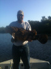 Fishing Florida for the Goliath Grouper