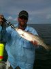 Big Speckled Trout